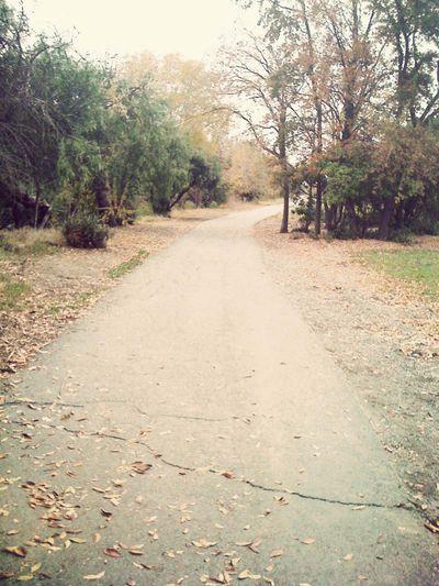 Walk 8