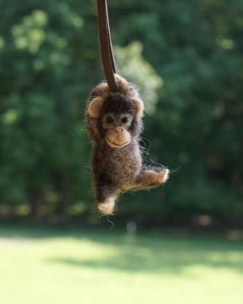 Monkey_motleymutton_2